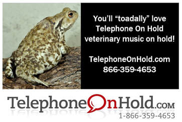 Telephone On Hold Veterinary Music On Hold